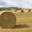 Bale of Straw — Stock Photo #24988021
