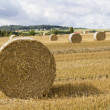 Bale of Straw - Stock Photo