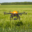 Flying drone in field — Stock Photo
