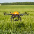 Stock Photo: Flying drone in field