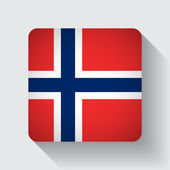 Web button with flag of Norway — Stock Vector