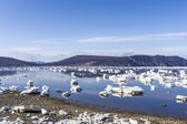 Spring ice in the sea — Stock Photo