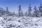 The first snow on abrupt hills — Stock Photo