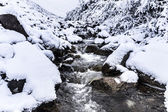Stream and first snow — Stock Photo