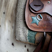 Saddle on a horse — Stock Photo