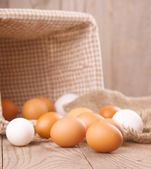 Eco chicken eggs — Stock Photo