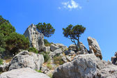 Beautiful landscape with rocks and trees — Stock Photo