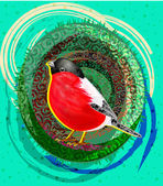 Bullfinch — Stock Vector