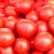 It is a lot of tomatoes — Stock Photo
