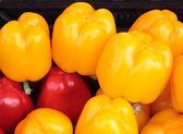 Sweet pepper. — Stock Photo