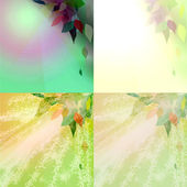 Abstract set of leaves — Stock Photo
