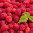 Raspberries with leaf — Stock Photo #16624993