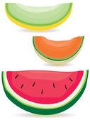Melon slice variety — Stock Vector