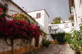 Medieval houses in the ancient city of Obidos, Portugal — Stock Photo