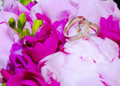 Wedding rings on pink peony flowers — Stock Photo