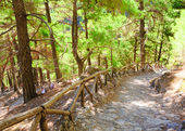 Samaria Gorge, island of Crete, Greece — Stock Photo