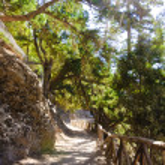Samaria Gorge, island of Crete, Greece — Stock Photo #35025221
