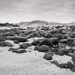 Sand beach with black voulcanic rocks in Iceland near Budir - small town on Snaefellsnes peninsula — Stock Photo #38258205