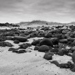Sand beach with black voulcanic rocks in Iceland near Budir - small town on Snaefellsnes peninsula — Stock Photo #38258223