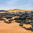 Sand beach with black voulcanic rocks in Iceland near Budir - small town on Snaefellsnes peninsula — Stock Photo #38258233