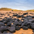 Sand beach with black voulcanic rocks in Iceland near Budir - small town on Snaefellsnes peninsula — Stock Photo #38258241