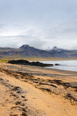 Sand beach with black voulcanic rocks in Iceland near Budir - small town on Snaefellsnes peninsula — Stock Photo