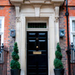 Traditional English victorian front door — Foto Stock