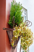 Beautiful flowers in a wicker basket on the wall — Stock Photo