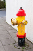 Fire hydrant on the sidewalk — Stock Photo