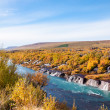 Hraunfossar waterfall, Iceland — Stock Photo #38505463