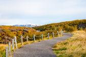 Isländska landskapet — Stockfoto