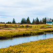Thingvellir national park, Iceland — Stockfoto #38584065