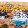 Hraunfossar waterfall, Iceland — Stock Photo #38729059
