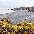 Icelandic beach with black lavrocks, Snaefellsnes peninsula, Iceland — Stockfoto #38729403