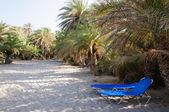 Famosa spiaggia di palme di vai, isola di Creta, Grecia — Foto Stock