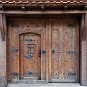 Old traditional Bulgarian door — Stock fotografie