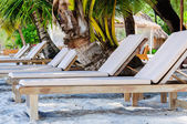 Sunbeds on exotic tropical palm beach — Stock Photo