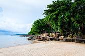 Beyaz kumları ve mavi suları ile egzotik tropik sahil — Stok fotoğraf
