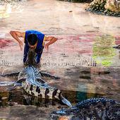Crocodile show at Samphran Crocodile Farm in Nakhon Pathom,Thailand — Stock Photo