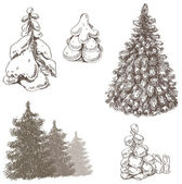 Collection of hand drawn fir-trees — Stock Vector