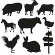Set of farm animals isolated on a white backgrounds - Stock vektor
