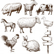 Set of farm animals isolated on a white backgrounds — Stock Vector