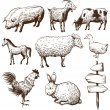 Set of farm animals isolated on a white backgrounds — Stock Vector #24720039