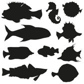 Set of fishes isolated on a white backgrounds — Stock Vector