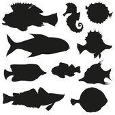 Aantal vissen geïsoleerd op een witte achtergrond — Stockvector