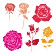 Hand drawn rose flowers vector set  — Stock Vector
