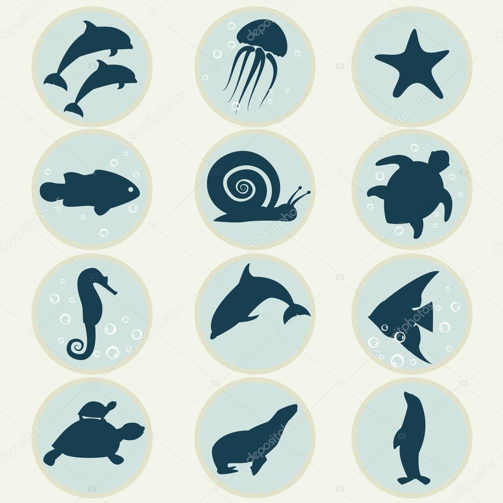 海洋生命 - 图库插图