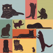 Stock Vector: Cats.