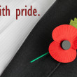 Poppy Appeal, Remembrance Sunday - poppy on jacket lapel. — Stockfoto