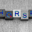 I Love Horses, sign series for horse riding and ponies. — Stock Photo